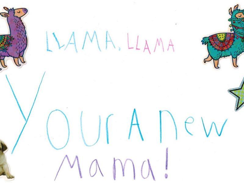 Llama, Llama